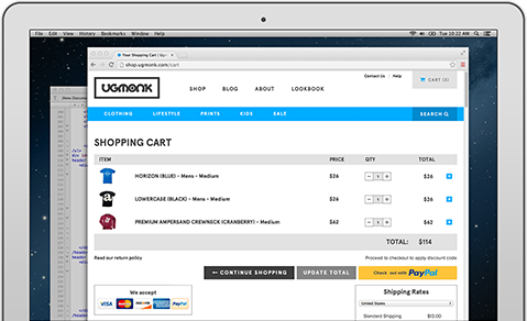 Accept Credit Card Payment on website with PayPal - Last Solutions b9aa92609