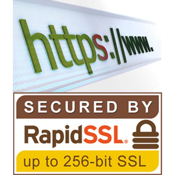 Rapidssl Certificate Last Solutions